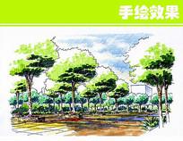 公园绿化图
