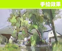 农村景致 JPG