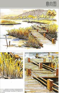 生态湿地金色风景手绘图 JPG