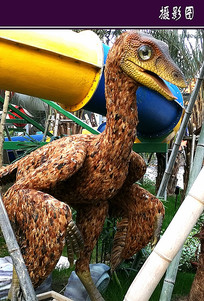 恐龙模型 JPG