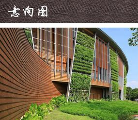酒店建筑垂直绿化设计