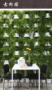 盆栽植物绿化景墙