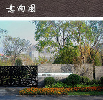花坛植物组团 JPG
