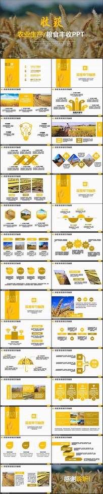 金色农业生产粮食农场PPT