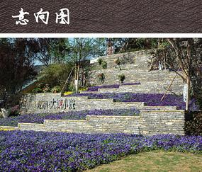 地公园_公园入口花坛景观