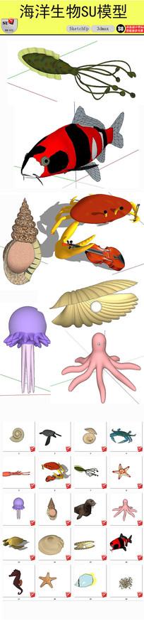 各种海洋生物SU模型 skp