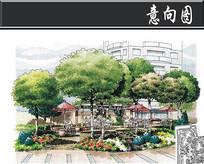 上海某花园屋顶花园手绘