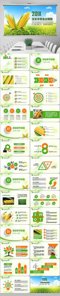 农业农场水稻玉米小麦PPT