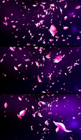 红色花瓣飘落带通道视频素材 婚礼玫瑰花瓣散落背景视频 动态玫瑰花瓣图片