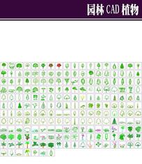 园林CAD植物