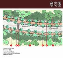 标准道路绿化平面设计