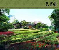 沱江公园花卉效果图