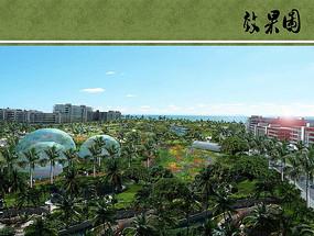 热带植物园鸟瞰图