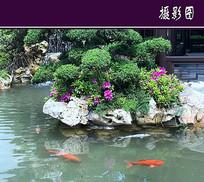 桃花源水池造景