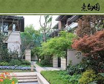 别墅住宅绿化设计