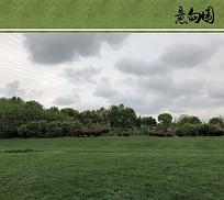 草原植物配置意向图