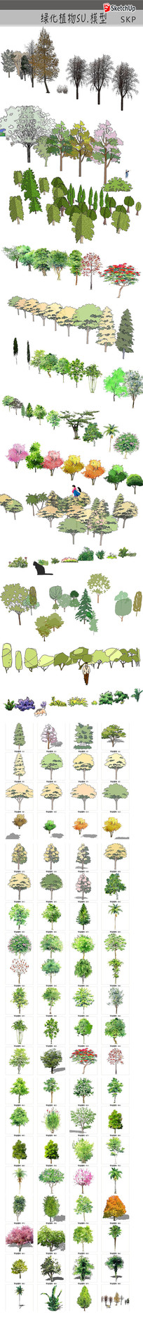 水彩树木SU模型