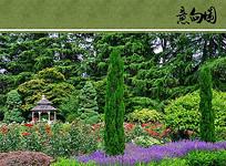 植物园景观意向图