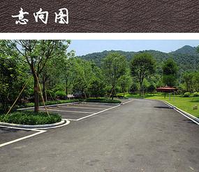生态停车场图片