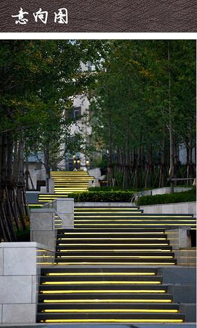 台阶树池景观灯光设计