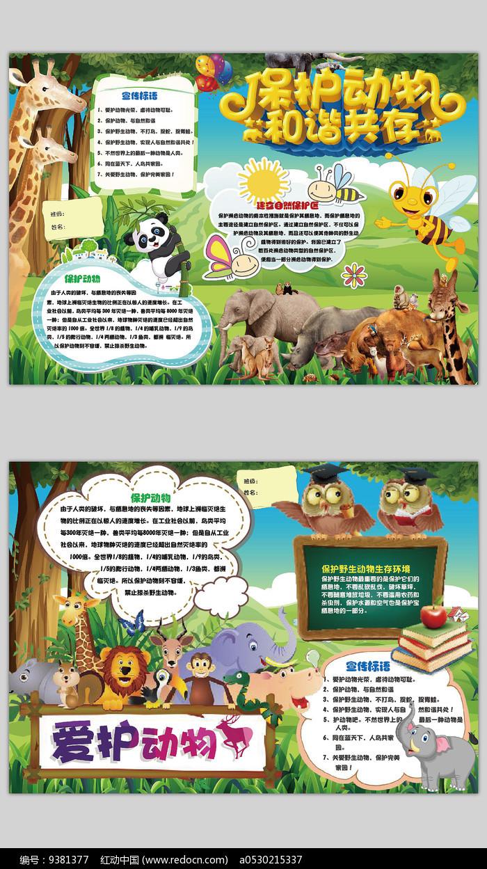 保护动物世界动物日手抄报图片