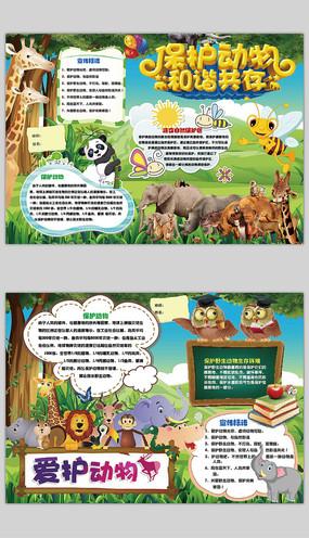 保护动物世界动物日手抄报