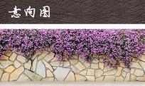 块石矮墙植物景观 JPG