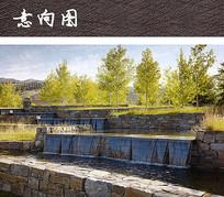 生态公园树池水景 JPG