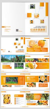时尚水果画册设计