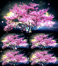 婚庆大屏唯美夜色樱花树LED视频