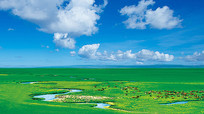 西藏草原蓝天白云