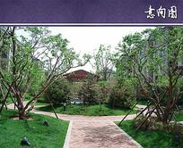 住宅区景观绿化设计