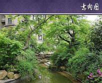 住宅区水景绿化设计