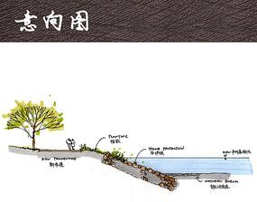 自然石护坡形式剖面