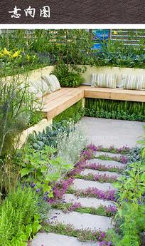 花园草花植物景观