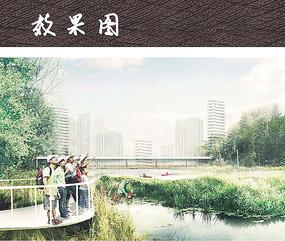 湿地公园游步道景观