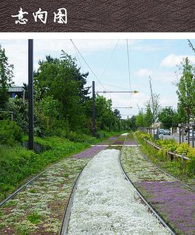 轨道绿化植物景观改造设计
