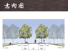 海风公园道路景观剖面图