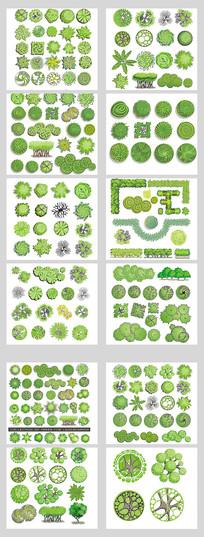 精致园林设计素材