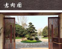 入口圆形植物组团景观 JPG