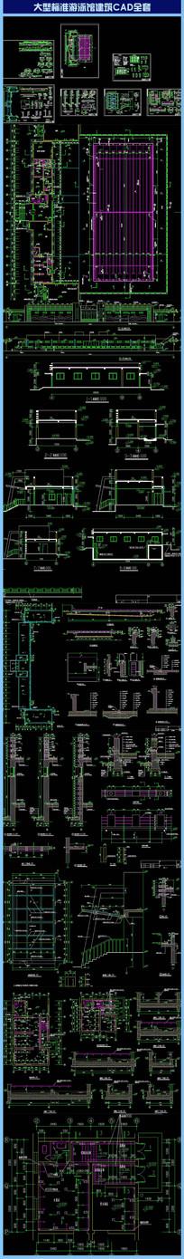 大型标准游泳馆建筑CAD全套 dwg