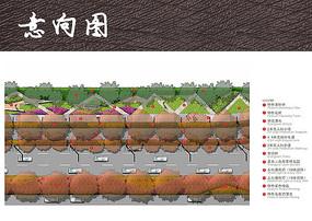 城市道路绿化配置彩平图