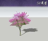 湖北紫荆su模型 skp