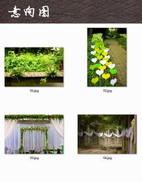 绿色植物装饰户外婚礼