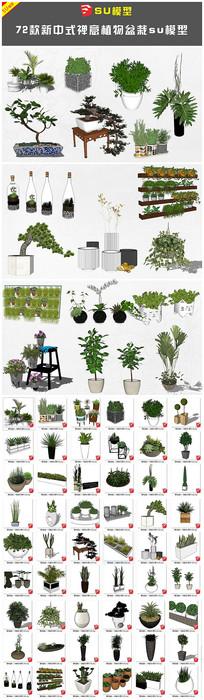 新中式禅意植物盆栽su模型