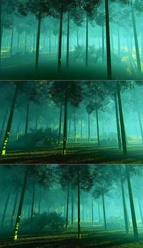 3D阳光晨雾竹林背景视频素材