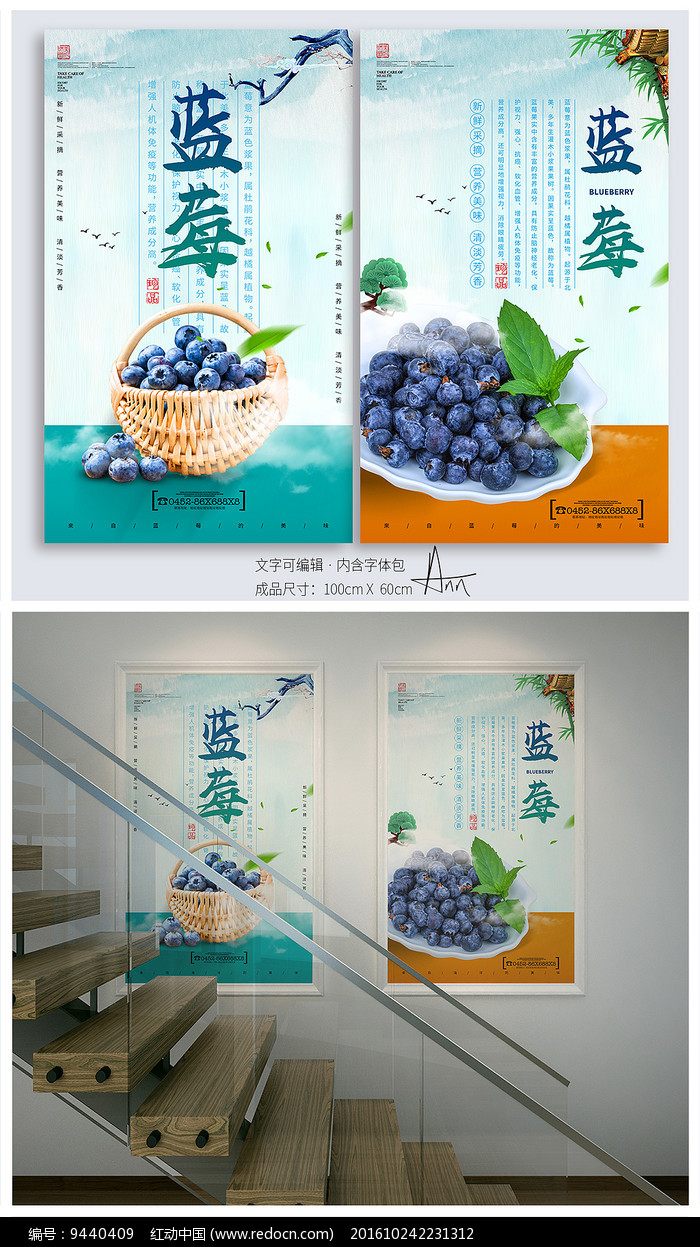 小清新蓝莓采摘海报图片