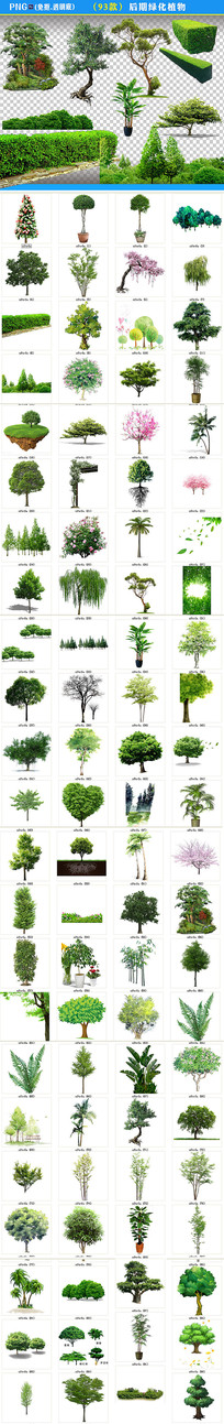 PNG后期树木植物