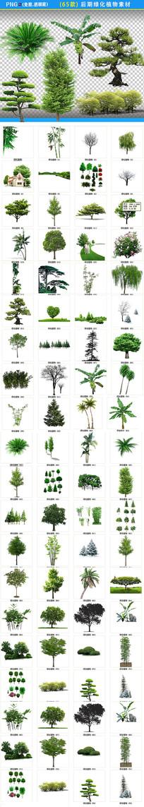 园林后期树木植物素材