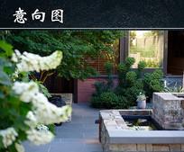 花园植物景观